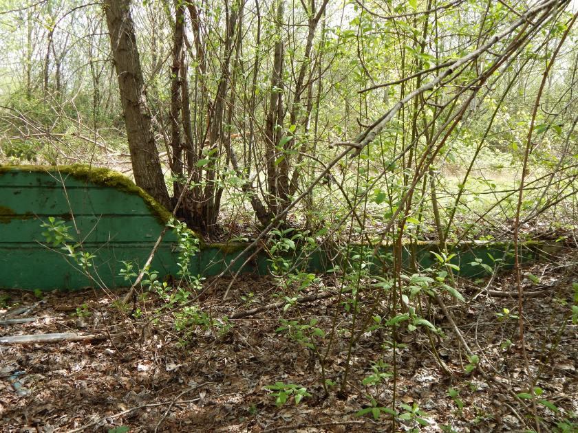 Crumbling Green Wall - Longacres Racetrack ruins