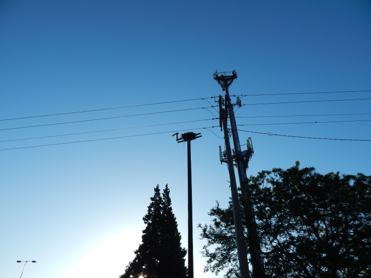 Freeway Osprey next to Cell Tower and power lines along I405