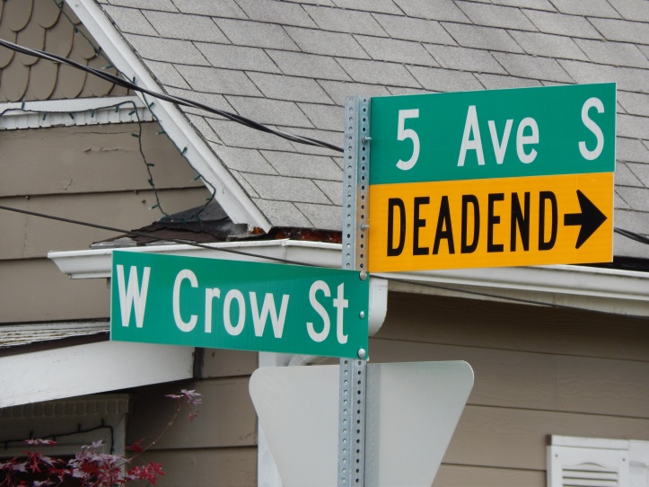 Crows have a street in Kent