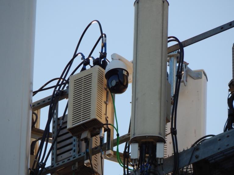 Mr Racks Livestream bird cam on cell tower