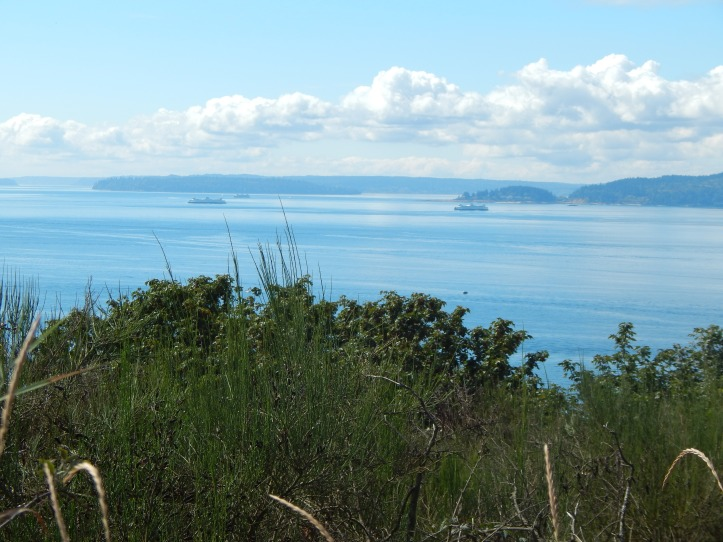 View of Puget Sound from Discovery Park Loop Trail