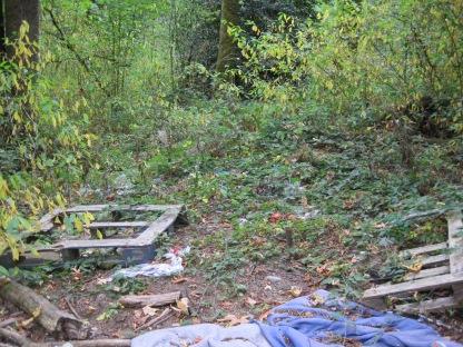 Westcrest Park Homeless mess
