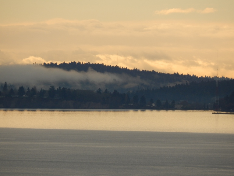 Puget Sound in winter light