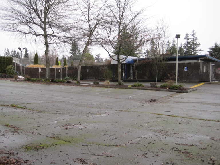 Arbor Heights Swim Club is where I landed